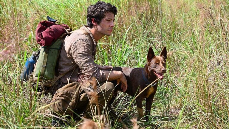Dylan O'Brien's Love and Monsters is Coming to Netflix